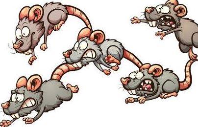 ratas corriendo ilustración